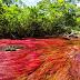 «Ο ποταμός των κρυστάλλων» Το πολύχρωμο ποτάμι της Κολομβίας [Εικόνες]