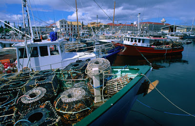 Hobart - Fishing fleet and their lobster pots moored in Victoria Docks, Hobart