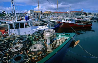Hobart - Fishing fleet and their lobster pots moored in Victoria Docks, Hobart