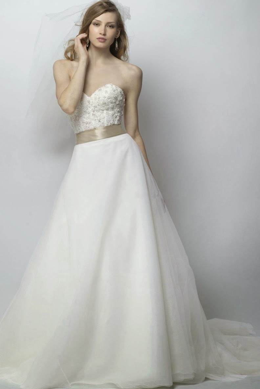 Backless Long Chiffon Wedding Dresses No Sleeves Photos HD Ideas