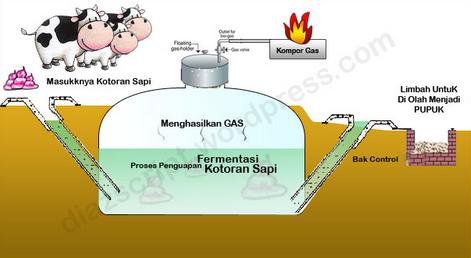 Pembuatan biogas dari kotoran sapi