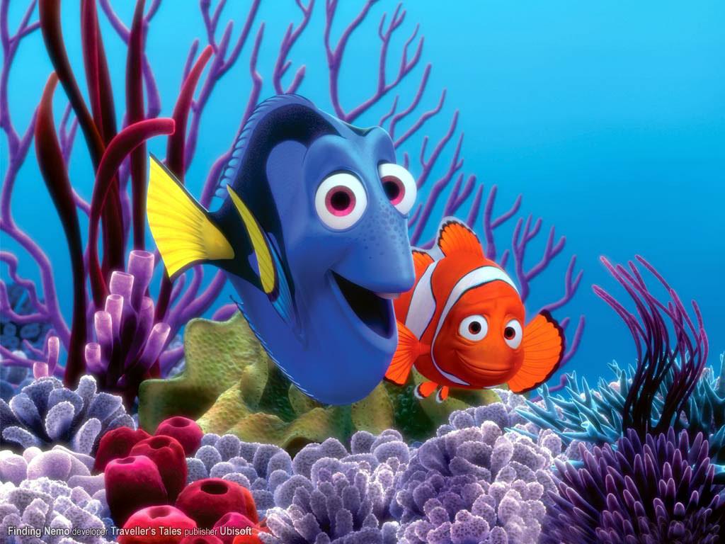 Steve 39 s fine finish fun camera photo gadgets for Nemo fish pictures