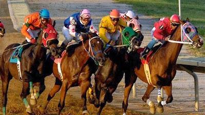 altılı ganyanda atın form durumu neden önemlidir
