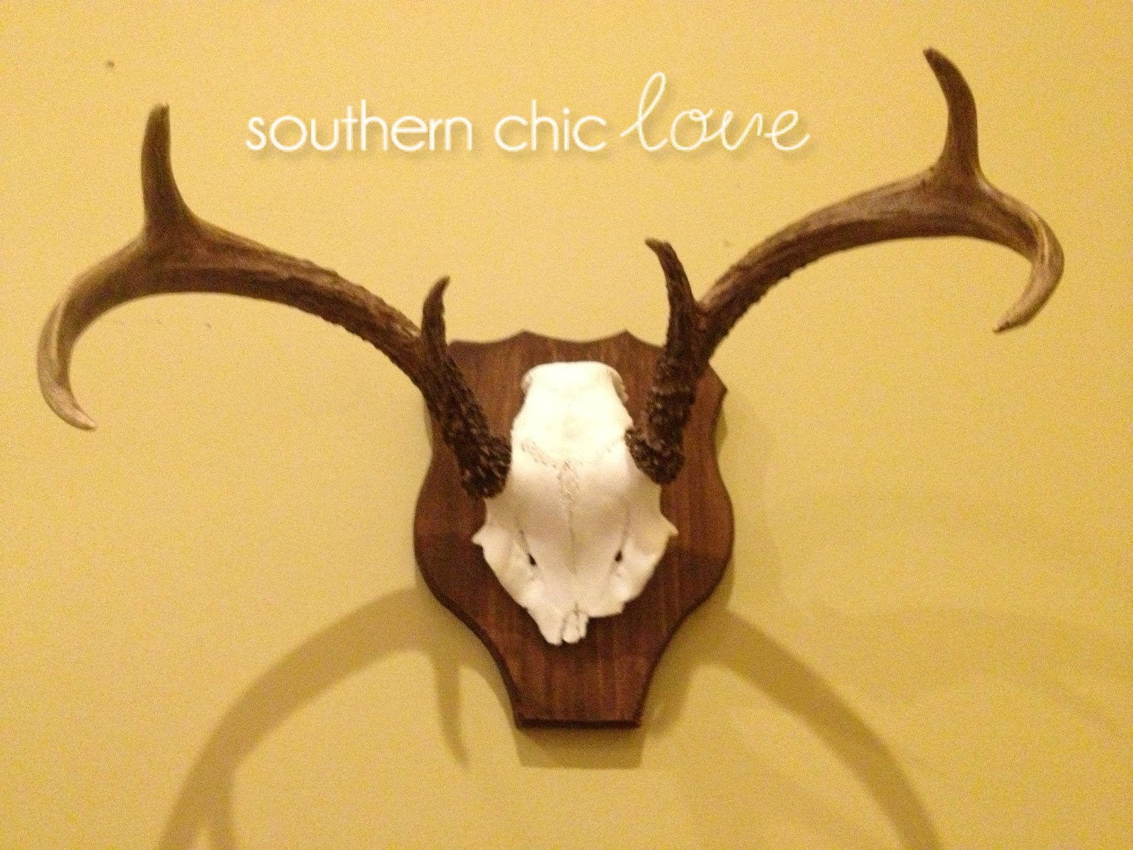 Southern Chic Love: knock-off: pottery barn skull plaque