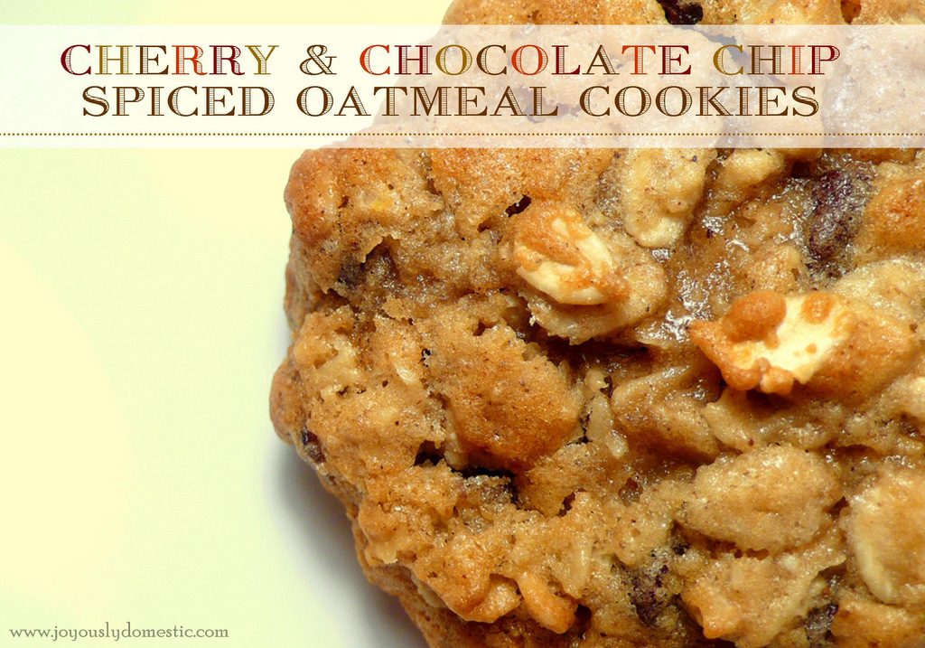 Joyously Domestic: Cherry & Chocolate Chip Spiced Oatmeal Cookies