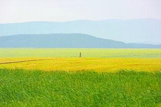 landscape pastel watercolor, Kazanlak