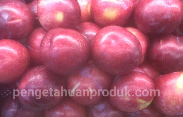 Perbedaan Buah Plum, Peach Dan Nectarine