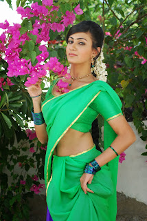 Actress Neelam Upadyaya Latest  Pictures in Green Saree  0004.jpg