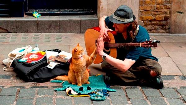 Foto de James Bowen y su gato Bob