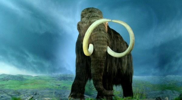 Penemuan Darah Gajah Purba Kejutkan Ilmuwan