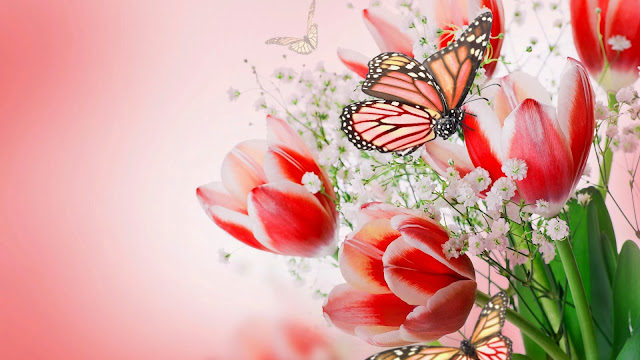 Wallpaper Full HD Mariposas y Tulipanes Rosados