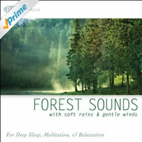 http://www.amazon.com/Forest-Sounds-Rains-Gentle-Winds/dp/B00462105W/ref=sr_1_1?s=dmusic&ie=UTF8&qid=1431996372&sr=1-1&keywords=nature+sounds