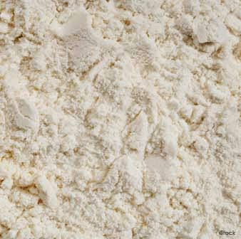 Intake of Branch Chain Amino Acids (BCAA) from Foods like Whey Protein