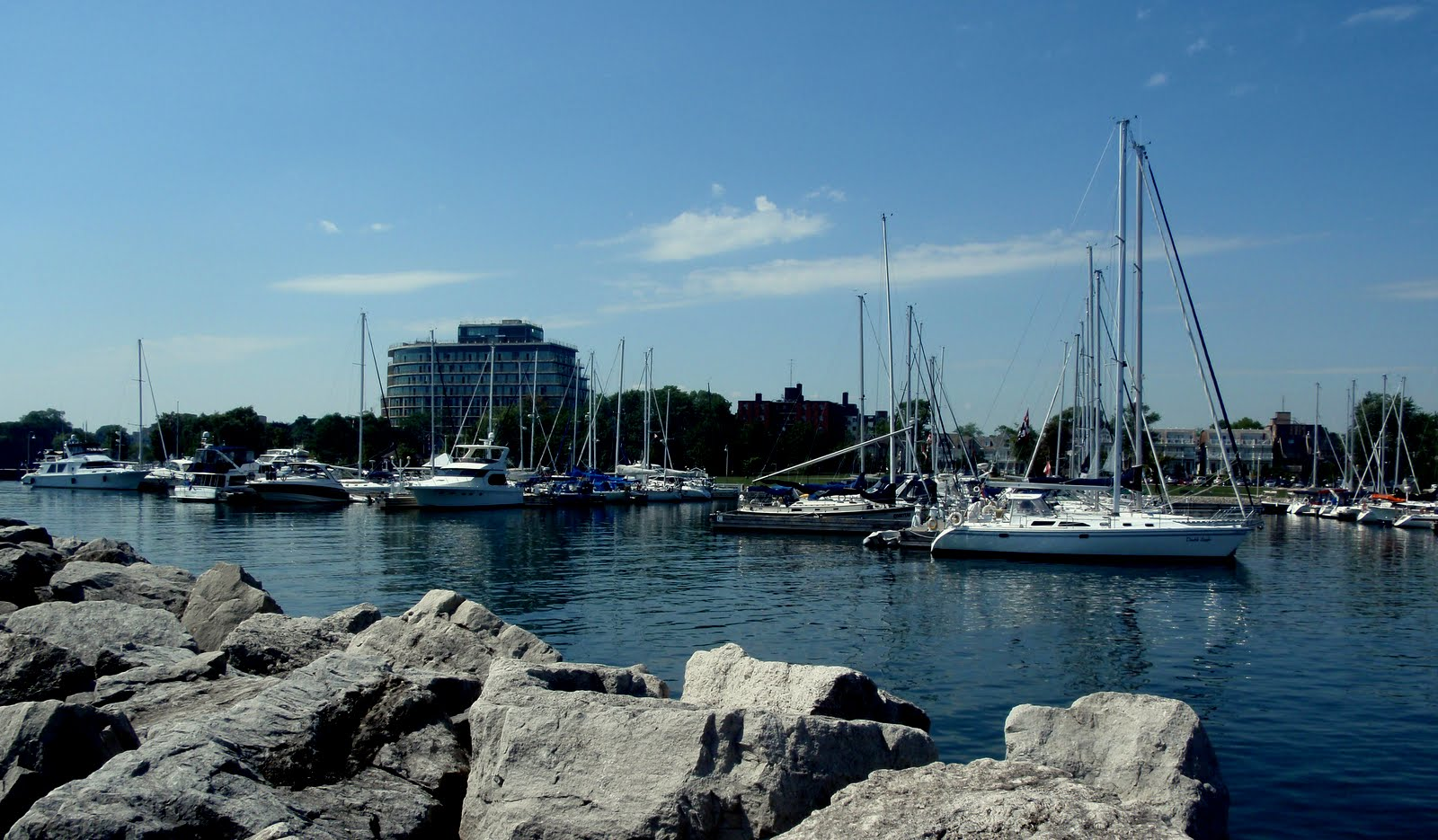 Harbour and expensive condos