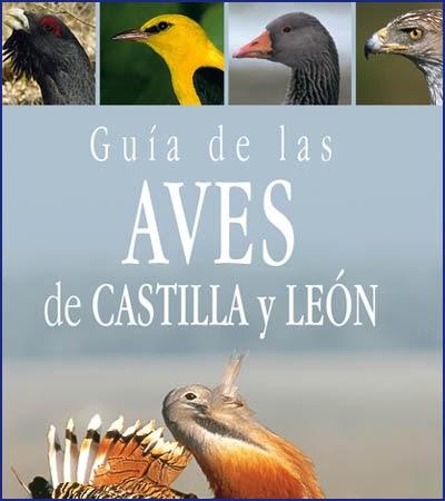 El pernil gu as de aves de nuestra regi n y provincia for Comedores castilla y leon