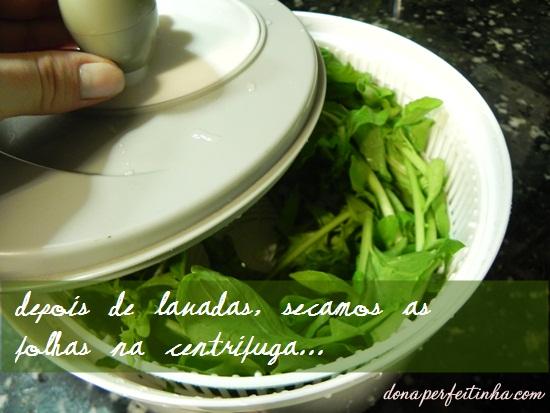 Como guardar verduras lavadas
