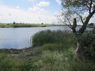 ерик Малые Бакланцы, рыбалка на ерике Малые Бакланцы