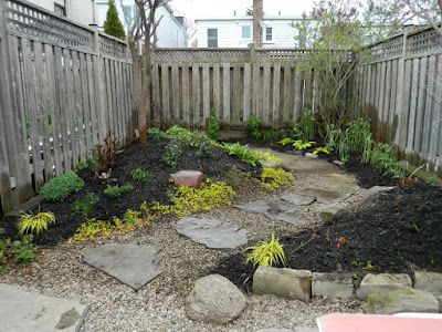 Coxwell Danforth backyard renovation after Paul Jung Gardening Services Toronto
