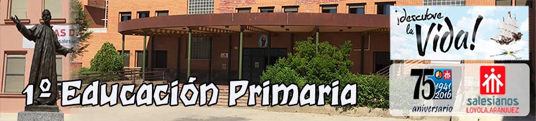 1º Educación Primaria