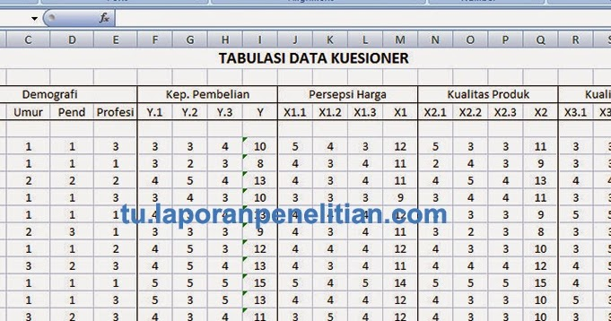 Tabulasi Data di Microsoft Excel ke SPSS