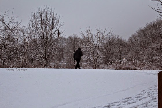 A person walking on the snow after a snowstorm