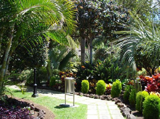 ARTE Y JARDINERÍA DISEÑO DE JARDINES Como diseñar un jardin