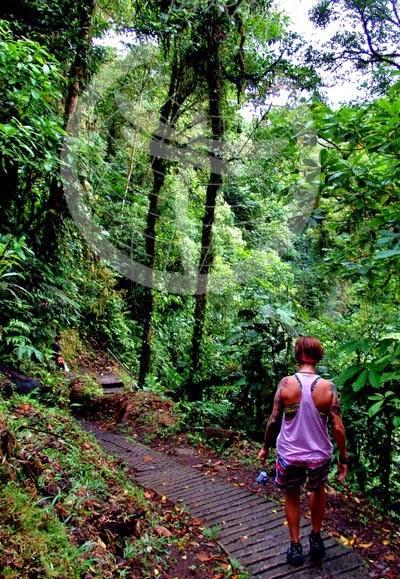 Camino construído en el Volcán Arenal. Costa RIca.