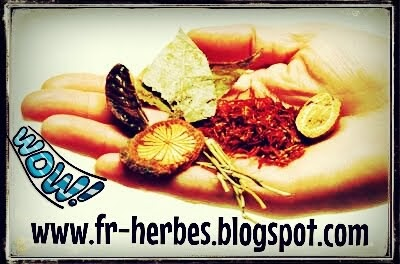 Herbal et la médecine alternative