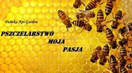 Pszczelarstwo - Blog o pasji, hobby, pracy związanej z pszczołami