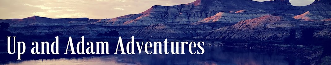 Up and Adam Adventures