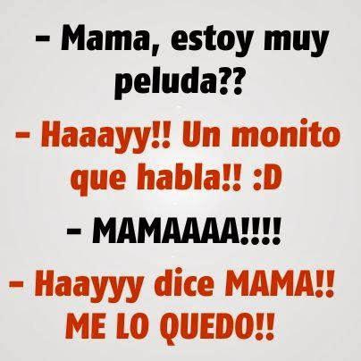 _mama, estoy muy peluda? _hay!!, un monito que habla _mama!!!! _ hay ...