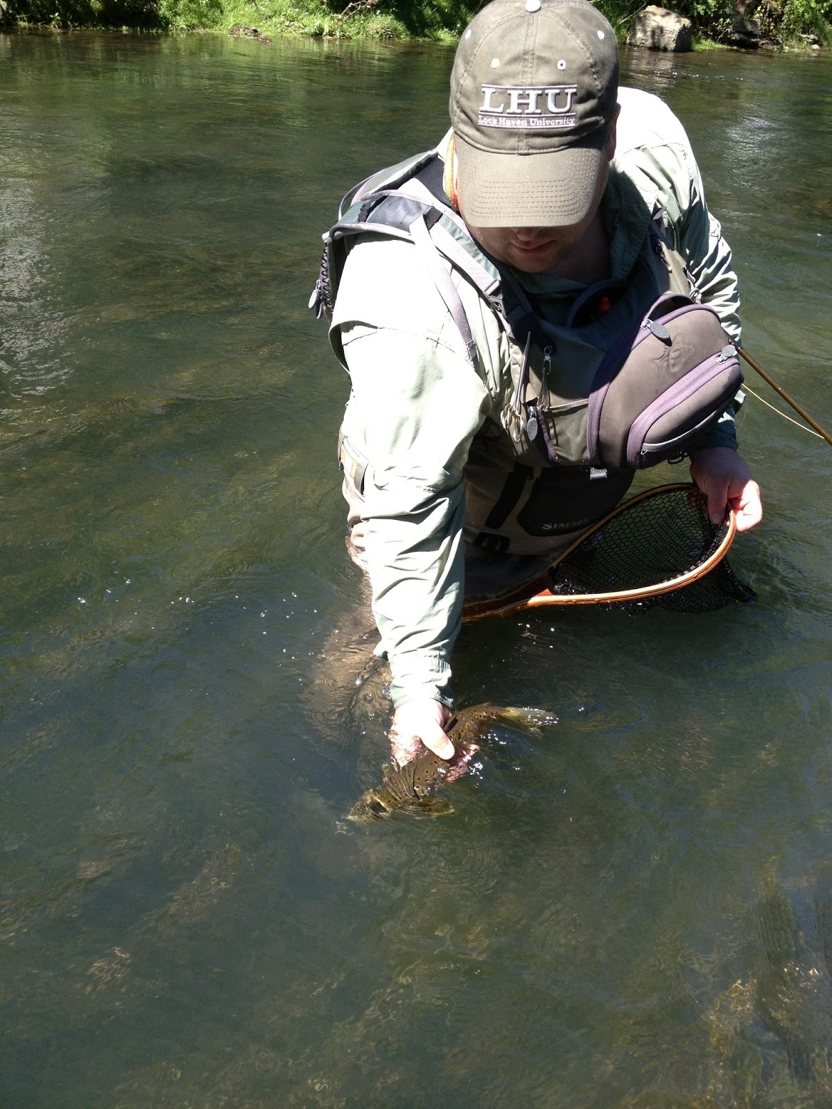 Grobe anglers and adventures spring creek fishing report for Spring creek pa fishing report