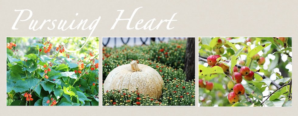 Pursuing Heart