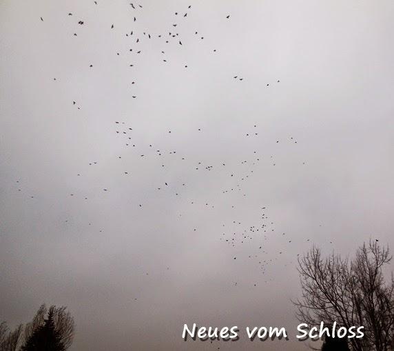 Beauty is where you find it- neuesvomschloss.blogspot.de