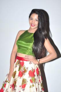 Daksha Nagarkar at hora hori audio 008.JPG