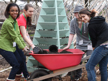 Girl Scouts of Nassau County (GSNC) Girl Scouts at the Battery Urban Farm
