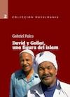 Gabriel Falco-David y Goliat,Una Figura Del Islam-