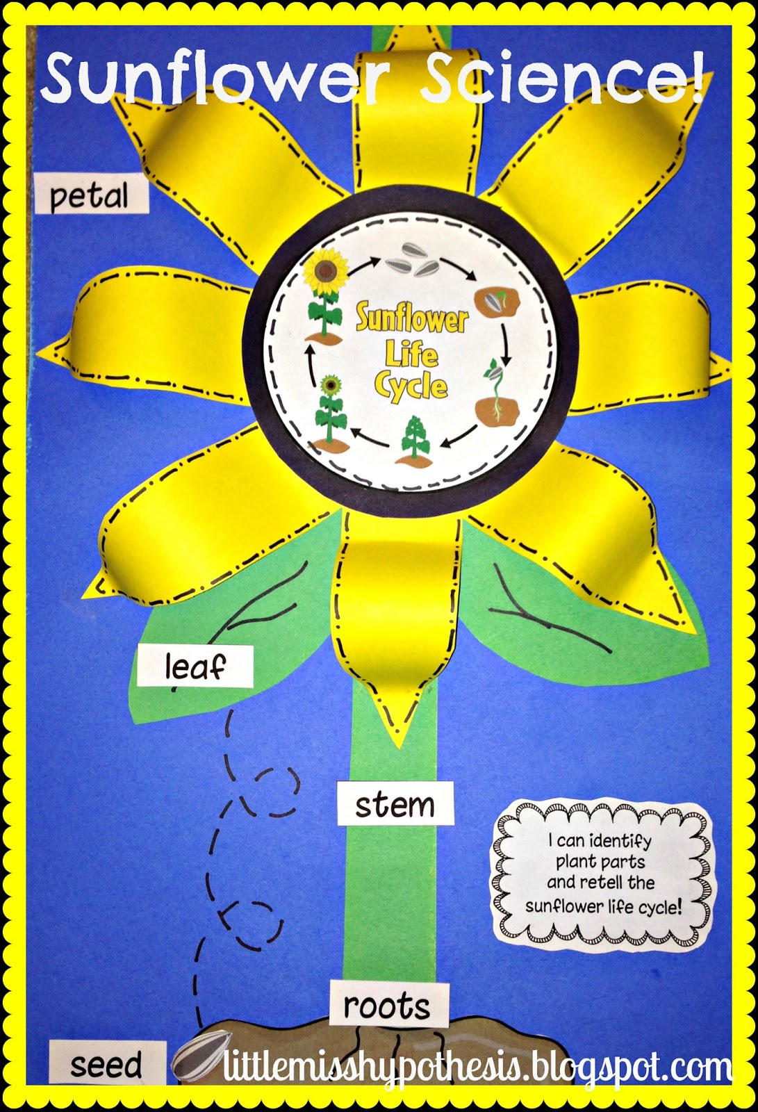 Glue The Life Cycle Stages In The Right Order likewise Original furthermore D D F Bb D A C Ab Bbc B Fall Preschool Preschool Themes additionally Sunflower as well D Shapes Sorting. on apple sequencing kindergarten