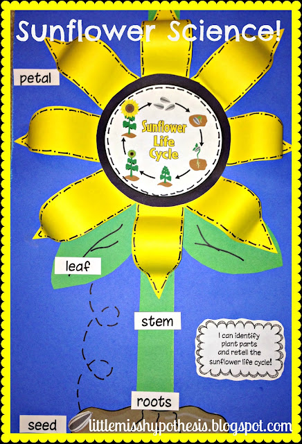 Parts Of A Sunflower For Kids File update sunflower fun!