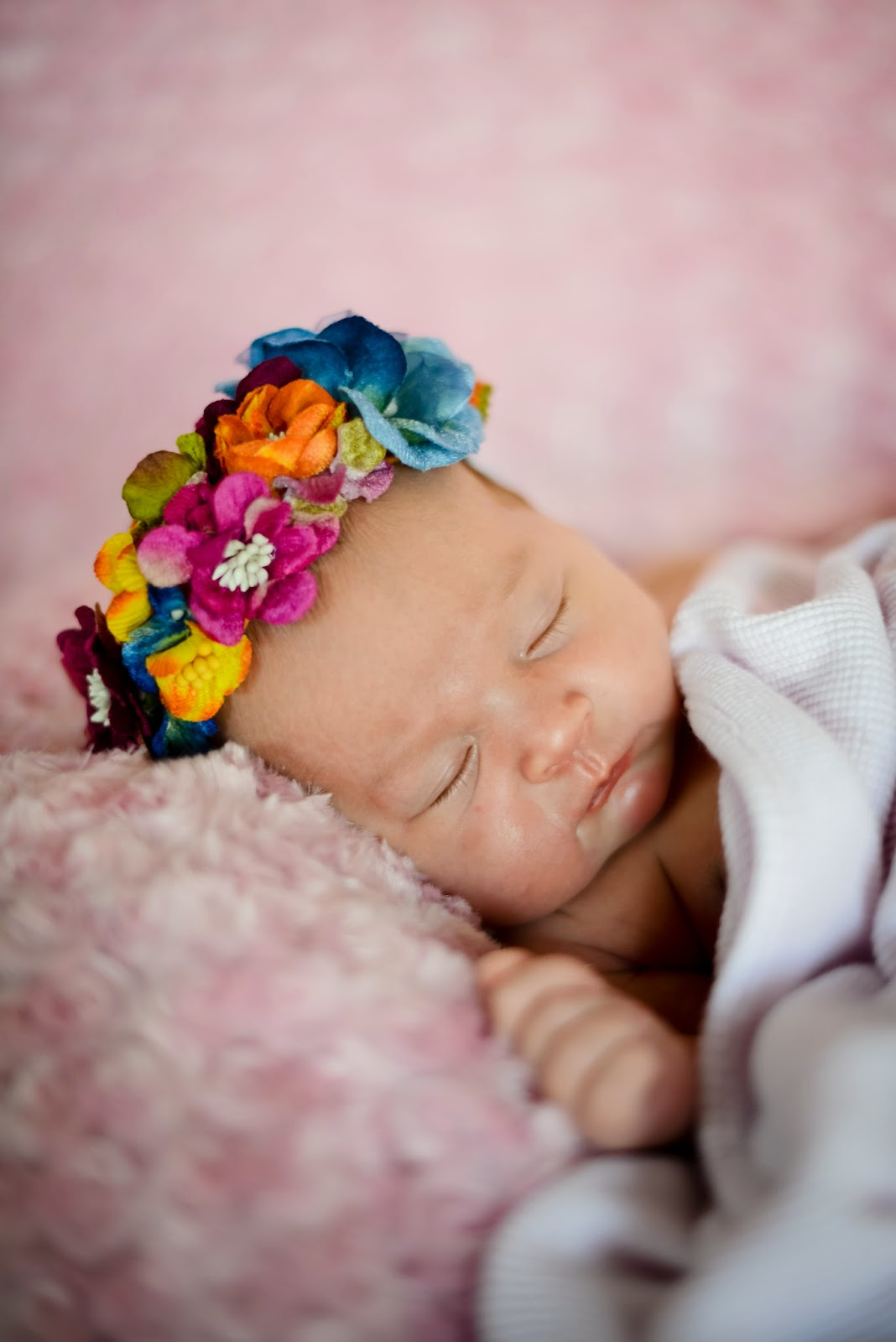 newborn portrait photos