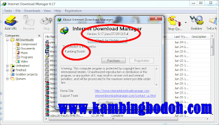 Free Download IDM 6.17 Final Full Patch + Serial Number