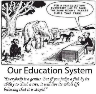 the perfect education system
