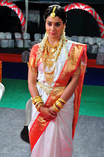 shriya saran Pictures in saree00 2