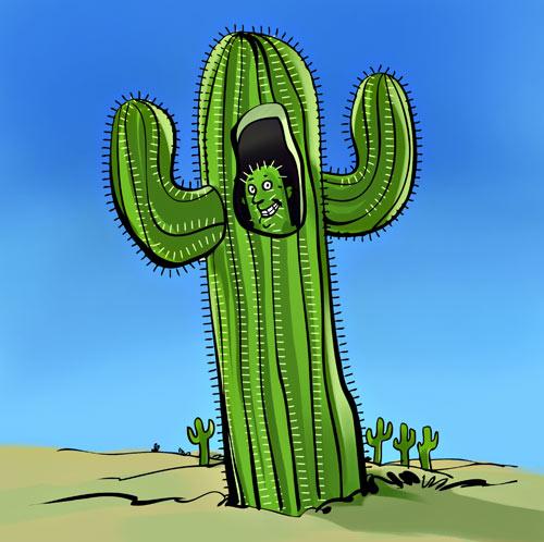 Apologise, but, Cactus voyeur pic
