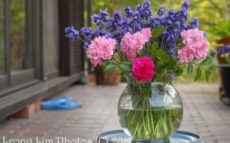 ดอกไม้หน้าฝนกลิ่นหอมหวานวันฝนโปรยปราย