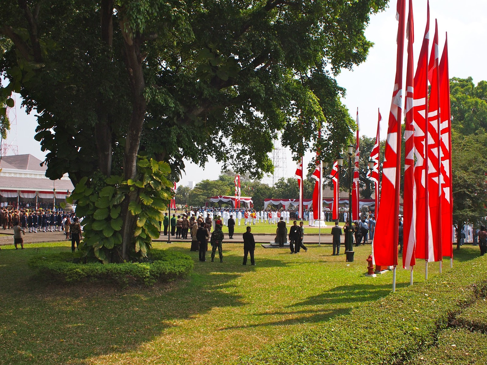 Carretera y Mosquitera: INDONESIA. 2.- Java. (Yogjakarta)