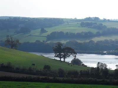 Scenary next to River Fowey