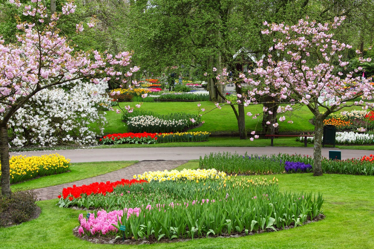 spring season urdu essay mausam bahar ka my favourite season in  spring season urdu essay mausam bahar ka my favourite season in poetry spring season