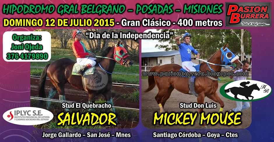 POSADAS - 12 DE JULIO 2015