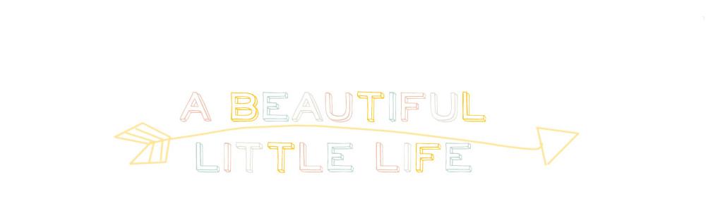 A Beautiful Little Life